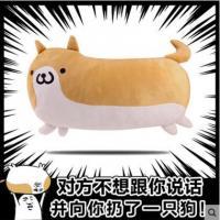 【周边】扔狗表情包单身狗创意搞怪柴犬二次元抱枕动漫周边毛绒靠垫
