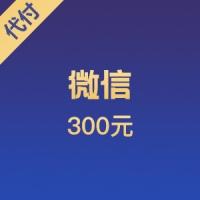 【限时特价】微信代付 300元